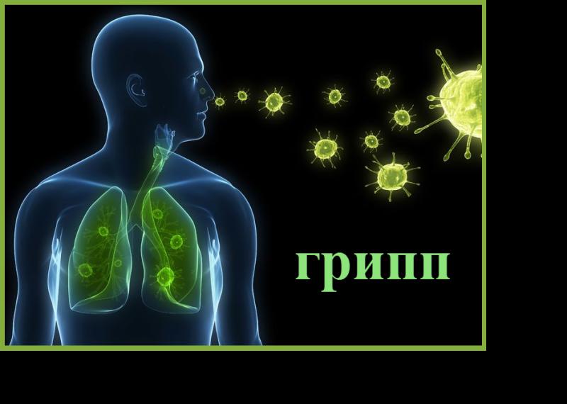 грипп 17