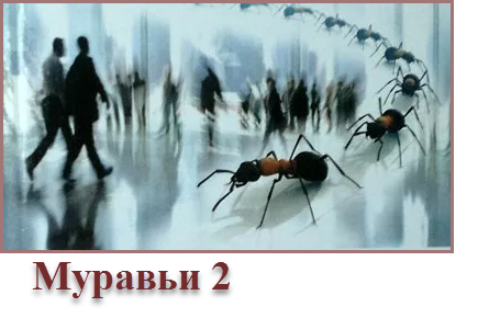 муравьи 4