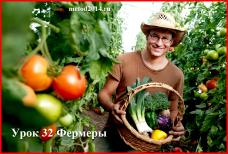 Урок 32 Фермеры